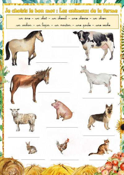 """Illustration de l'exercice : """"Je choisis et je recopie le bon mot : les animaux de la ferme"""""""