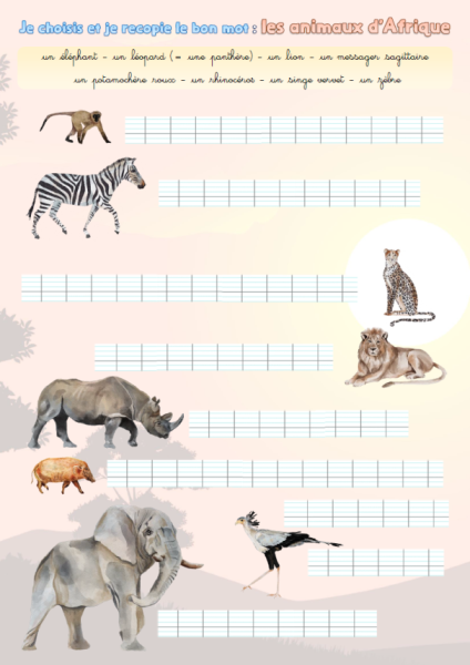 """Illustration de l'exercice : """"Je choisis et je recopie le bon mot : les animaux d'Afrique"""""""