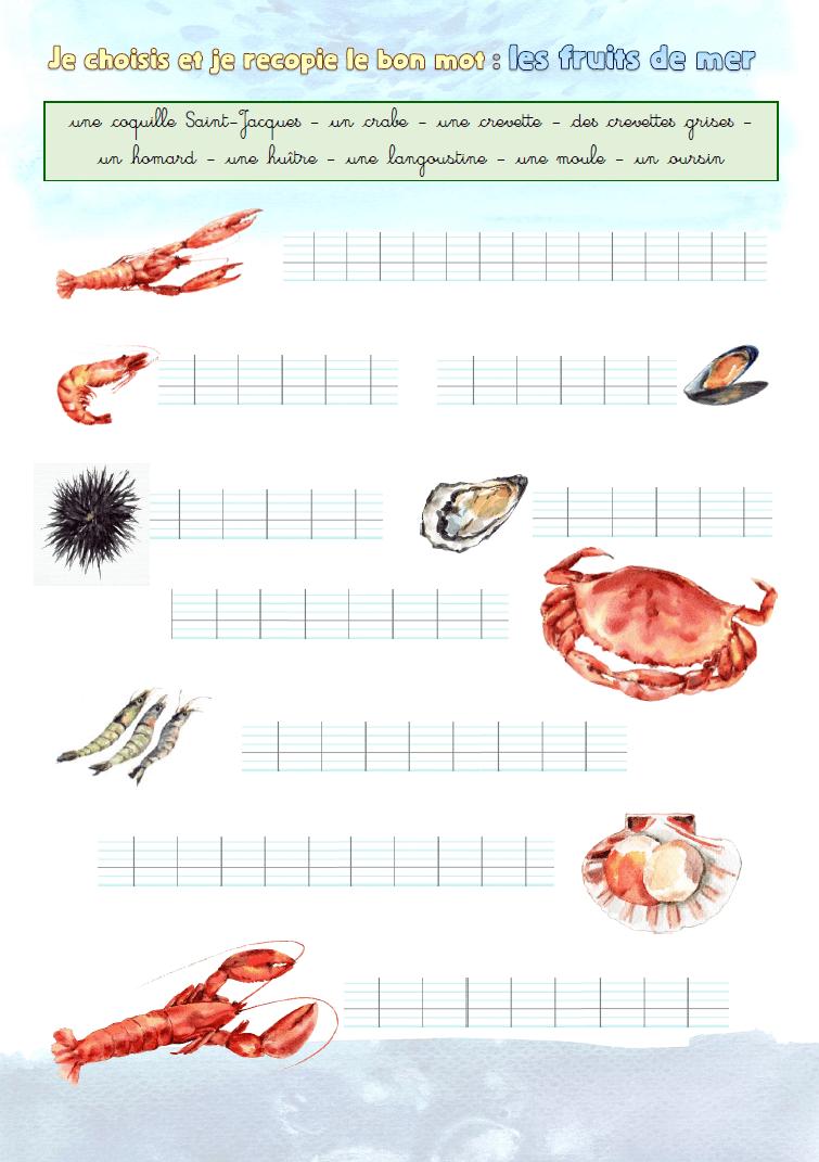 """Illustration de l'exercice : """"Je choisis et je recopie le bon mot : les fruits de mer"""""""