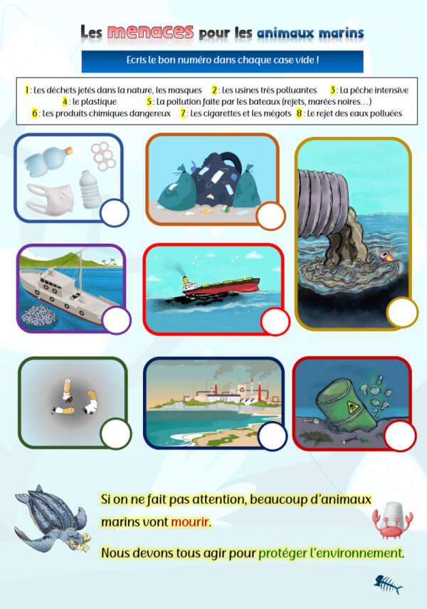 """Illustration de l'exercice """"Menaces pour les animaux marins"""""""
